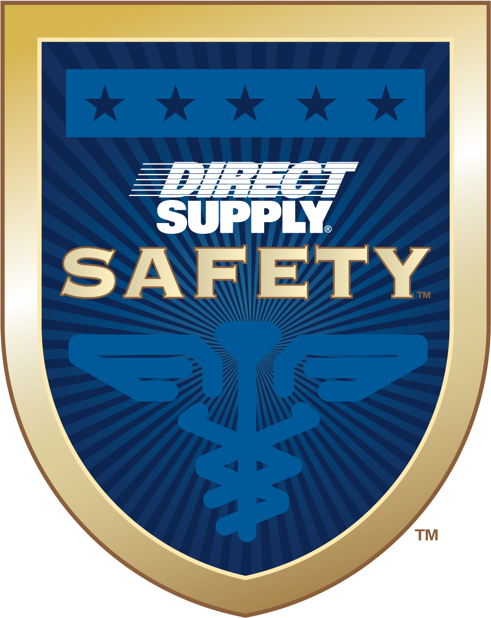ds-safety-white-logo-3