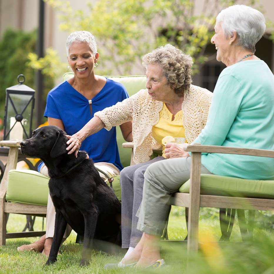 happy seniors petting a dog